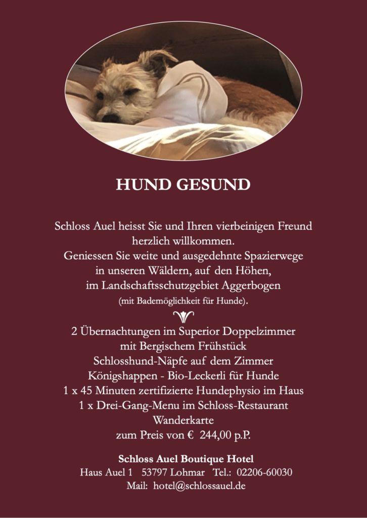Schloss Auel Boutique Hotel - Hund gesund